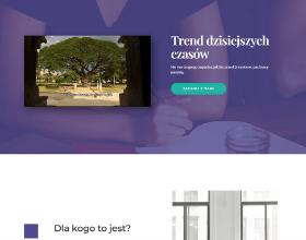 damianmigala.pl--tworzenie-stron-internetowych